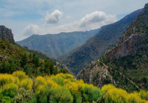 Waarom naar Andalusië op vakantie?